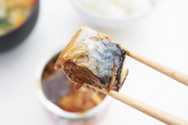食材総選挙 青魚  鯖缶